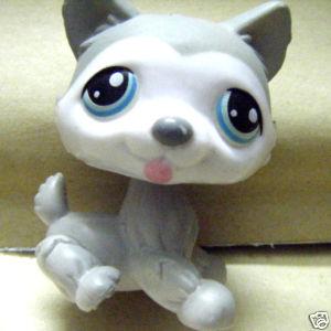 littlest pet shop husky - photo #39