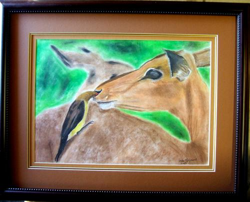 oxpecker,chalk pastels, mike taljaard