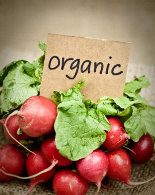 Food Origins: Going Organic