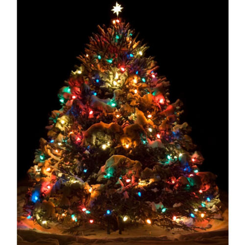 Holiday Decor - String of 40 Multicolour Christmas tree lights was sold for R15.00 on 21 Nov at ...