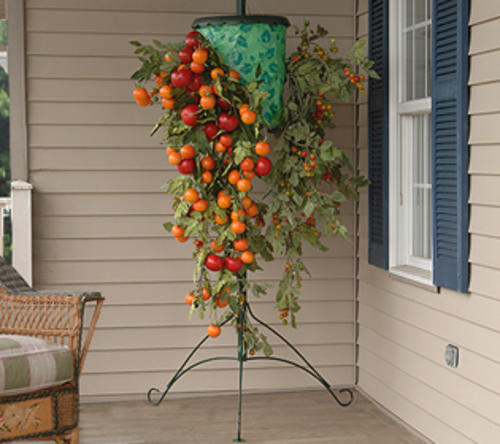 Tomato and Strawberry Growers - Pots & Planters - Tomato And Strawberry Growers Was Sold For R59