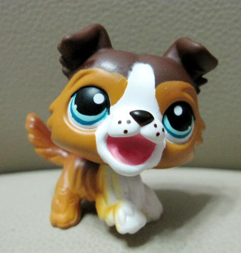 Littlest pet shop dog | Littlest pet shops