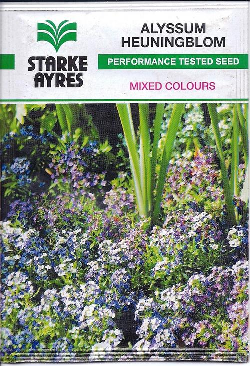 ALYSSUM - Mixed Colours