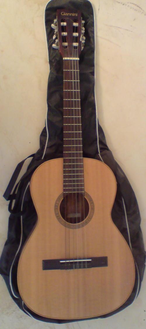 Guitar Amp Bass Giannini Nylon String Mod Awn 50 Ser 04 73