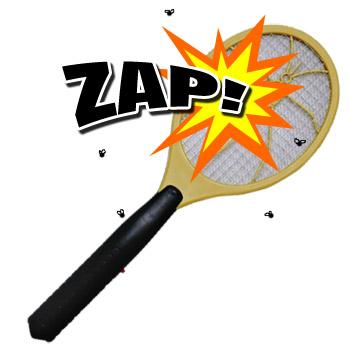 448673_120417091246_bug-zapper-racket.jpg