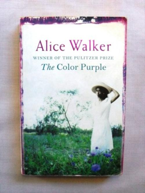 a review of alice walkers story the color purple A story of oppression, the strength of female bonds, and a consideration of one's spiritual place in the world, the color purple is a novel that faces the reality of life lived under numerous oppressive forces.