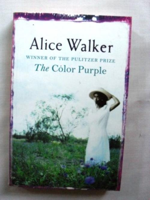 A summary of the book the color purple by alicve walker