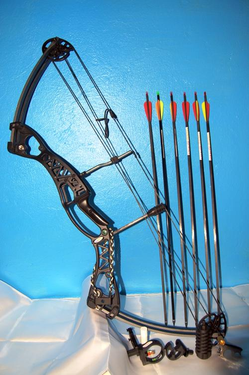 Stealth Hunter Camo Compound Archery Bow