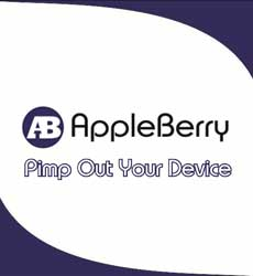 Store for AppleBerry on bidorbuy.co.za