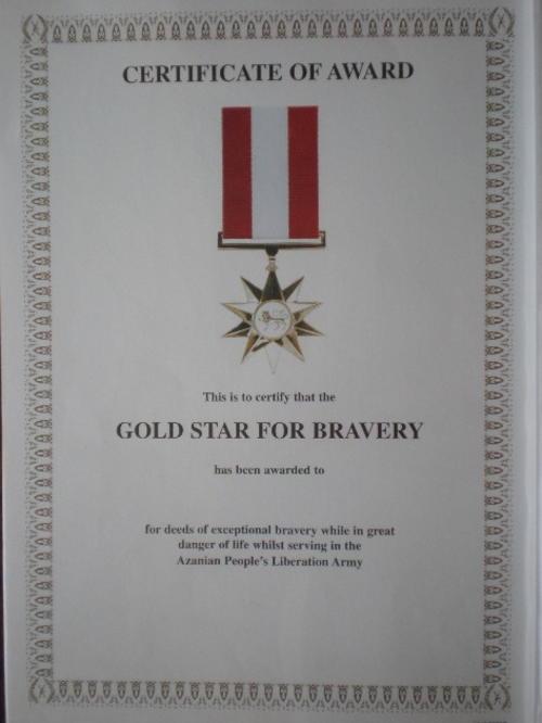 Sadf amp sandf sandf gold star for bravery award certificate original
