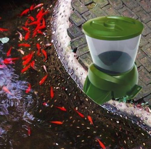 Other fish products automatic fish pond pet feeder with for Koi fish feeder