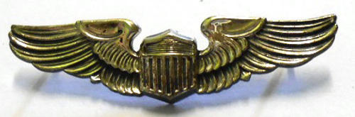 international badges insignia us air force pilot wing. Black Bedroom Furniture Sets. Home Design Ideas