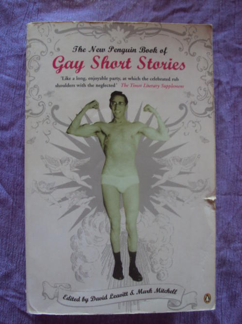 X rated gay novels