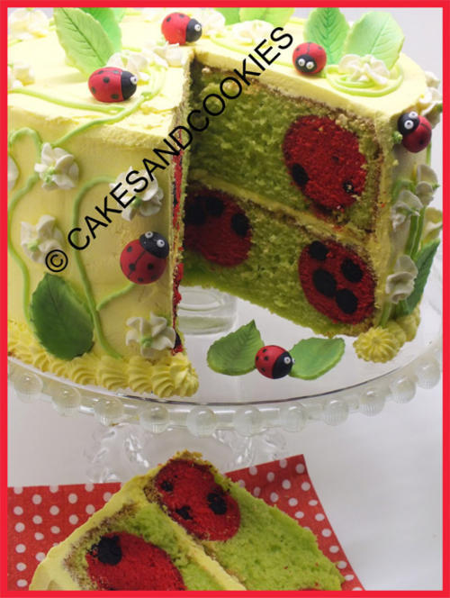 Learn how to bake ladybirds and polka dots inside your cakes and cupcakes - Tutorial For Sale