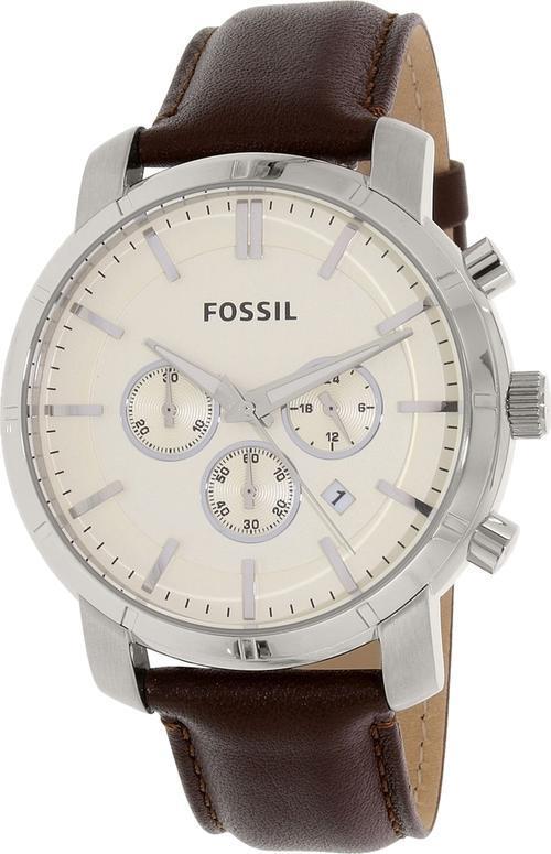 Fossil essay