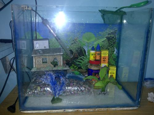 Fish tanks aquariums complete fish tank with every for What do you need for a fish tank