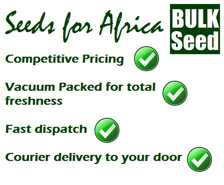 Bulk Flower Seeds – Seeds for Africa