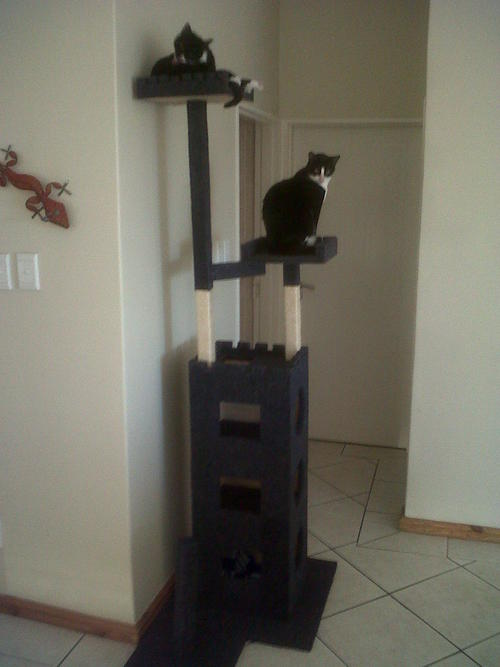 Toys treats cat castle cat post cat tree cats for Castle cat tower
